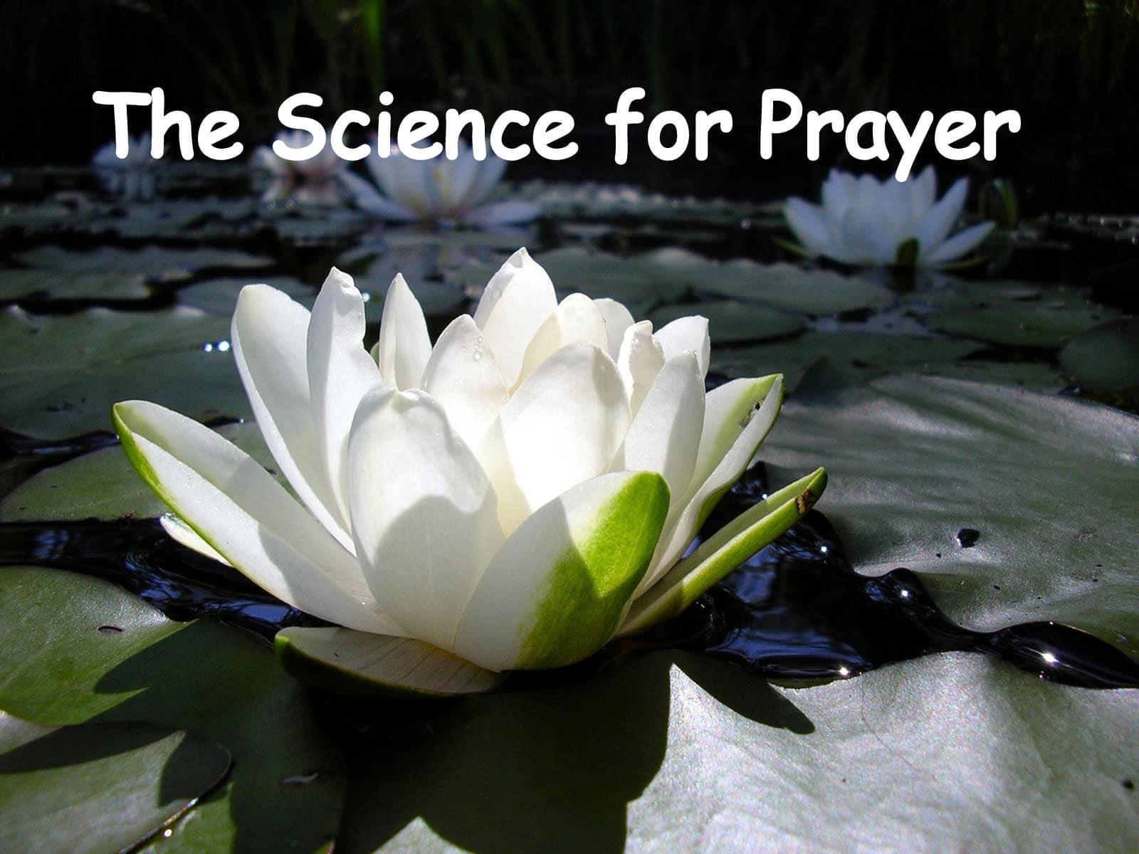 Prayer time - Life In Vedas