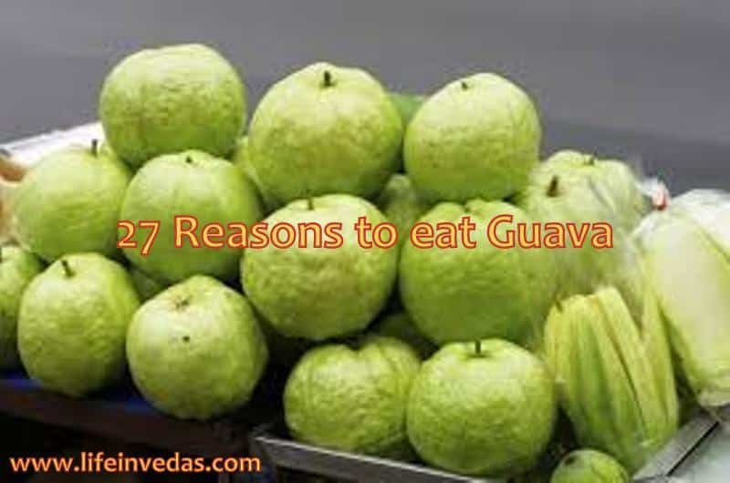 Guava family life in vedas ccuart Image collections