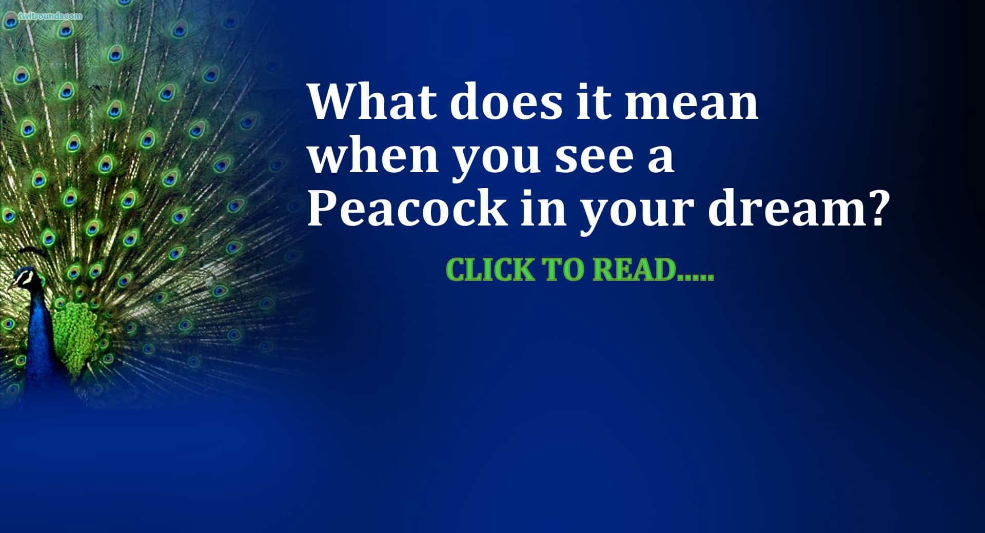 21 peacock dream meaning life in vedas biocorpaavc Images