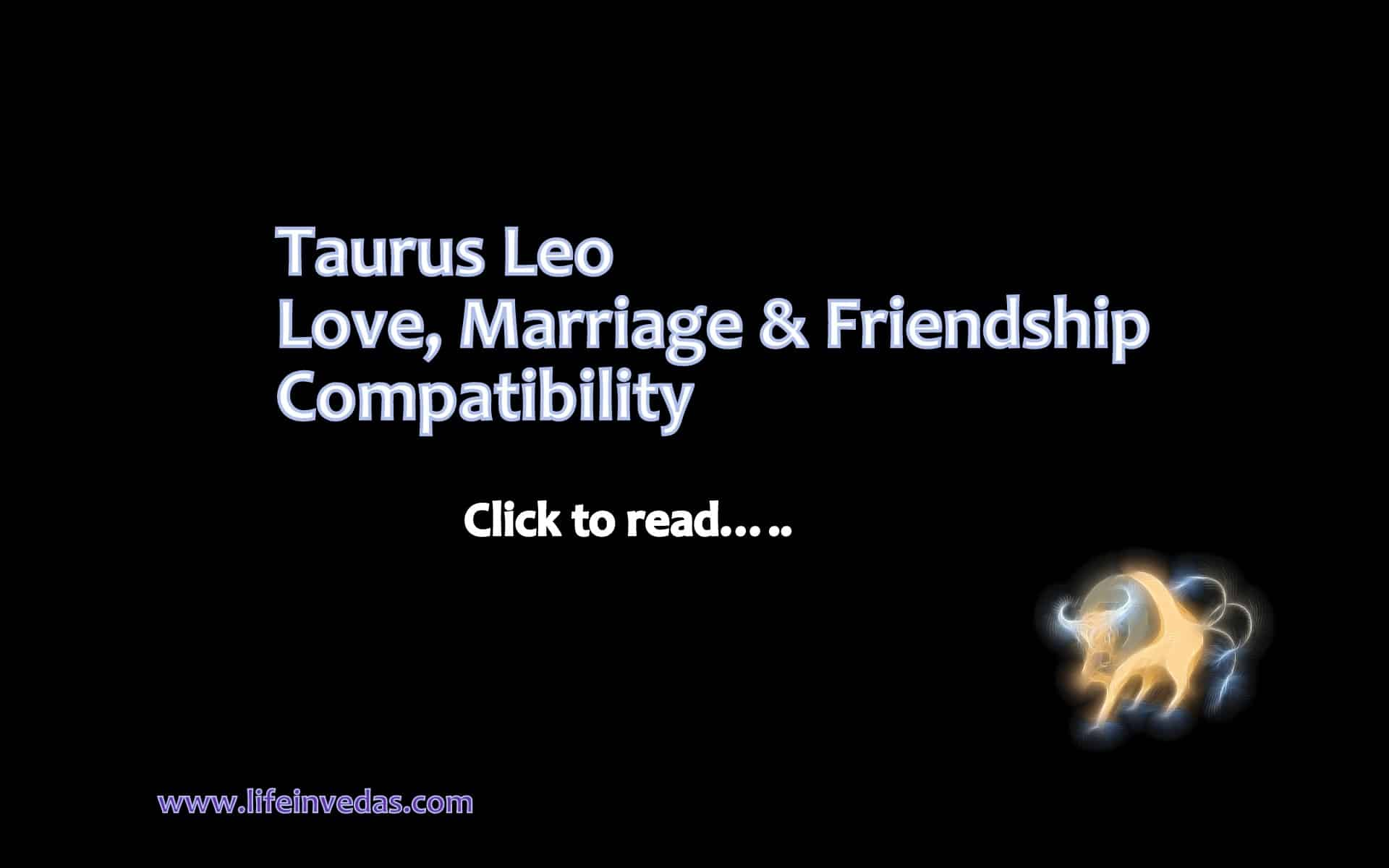 Taurus taurus friendship